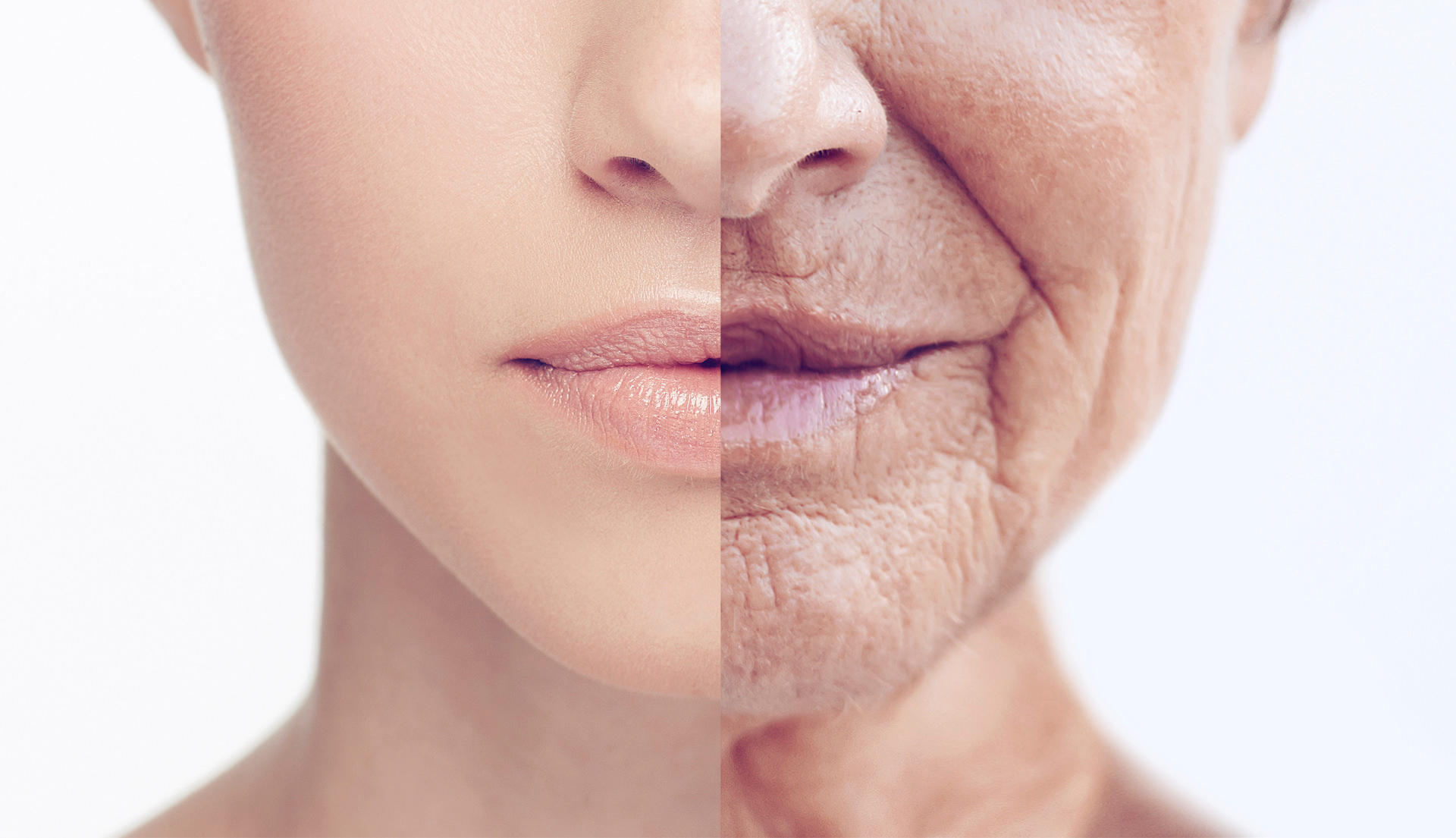Aging Demystified